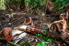 在密林供以人员Mentawai部落收集植物的 免版税库存图片