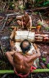 在密林供以人员Mentawai部落收集植物的 免版税库存照片