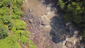 在密林河下看法的空中上面  4K 巴厘岛印度尼西亚 股票录像