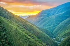 在密林的日出包括小山 免版税图库摄影
