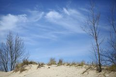 在密歇根湖的沙丘 库存图片