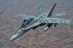 在密级队形的老虎镶边F-18大黄蜂 免版税库存图片