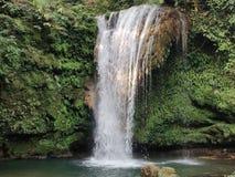 在密集的森林中的最美丽如画的瀑布 免版税库存照片
