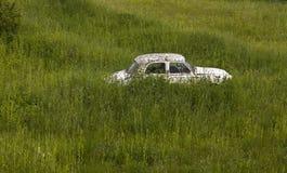 在密集的植被的老汽车 图库摄影