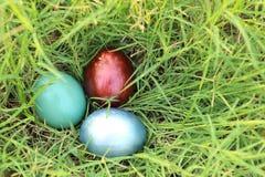 在密集的草掩藏的五颜六色的复活节彩蛋 春天假日概念 免版税库存图片