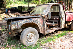 在密集的草的汽车击毁 免版税图库摄影