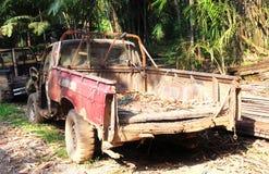 在密集的草的汽车击毁 免版税库存照片