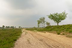 在富兰德铺沙在一个朦胧的荒地风景的路 库存照片