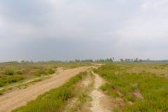 在富兰德铺沙在一个朦胧的荒地风景的道路与杉树在背景中 库存图片