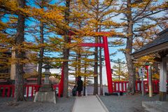 在富士斯巴鲁线第5个驻地,日本的巨型红色门 免版税库存图片
