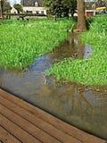 在对公众被打开的农场内筑成池塘 库存图片