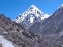 在对牛拉车旅行的bhagirathi gomukh主导的峰顶之后 免版税图库摄影