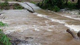 在对洪水小河流动的恐惧下浇灌大量 股票录像