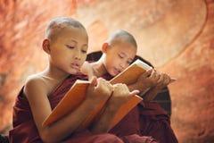 读在寺庙之外的年轻佛教新手修士 免版税库存照片