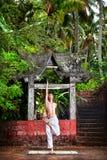 在寺庙瑜伽附近的密林 免版税图库摄影