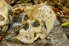 在寺庙的人的skulll 免版税库存照片