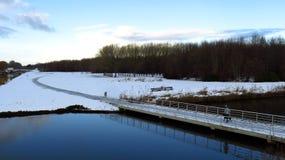 在导致在桥梁的一条积雪的道路的走的狗森林 库存照片
