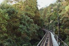 在导致升旗山上面在乔治市的绿色树中的铁路 马来西亚槟榔岛 库存照片