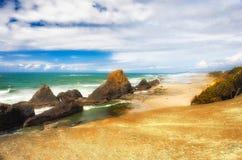 在封印岩石海滩的潮间带的岩石 免版税库存图片