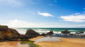 在封印岩石海滩的潮间带的岩石 免版税库存照片