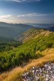 在小丘污蔑之间的山 山波兰tatra 库存照片