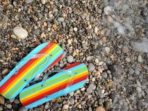 在小卵石海岸的海滩凉鞋 免版税库存图片