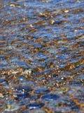 在小卵石的水波纹 库存照片