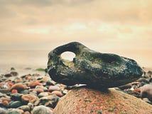 在小卵石的Bizzare岩石靠岸,上面剧烈的天空 石近海 图库摄影