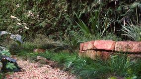 在小卵石道路的平底锅有野花的和土气木庭院门在村庄庭院里 股票录像