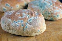 在小圆面包的模子 免版税库存照片