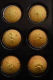 在小圆面包锡的六个家庭焙制的杯蛋糕 免版税库存照片