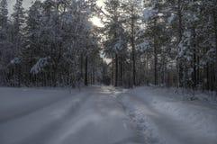在小多雪的森林公路以后的汽车轨道冬天 免版税库存照片