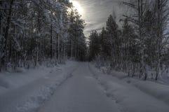 在小多雪的森林公路以后的汽车轨道冬天 库存图片