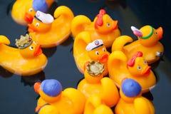 在小家伙水池的黄色橡胶鸭子 免版税库存图片