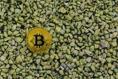 在小小卵石背景的金黄bitcoin谎言 免版税图库摄影