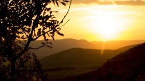 在小山上的金黄日落 库存图片