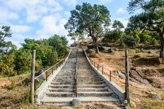 在小山上面的楼梯,与树和多云天空 库存图片