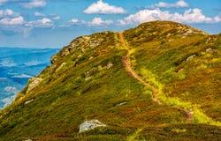 在小山上面的游人小径 免版税库存照片