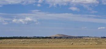 在小山下的干草草甸在Dubbo,新南威尔斯,澳大利亚附近 库存图片