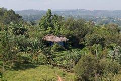在小山中间的一个小屋 免版税图库摄影