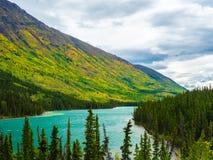 在小山倾斜的秋天颜色在育空加拿大 图库摄影