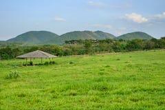 在小山前面的马槽枥 图库摄影