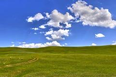 在小山和云彩的绿草 免版税库存照片