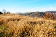 在小山和未开发的地区有树的和草的美好的五颜六色的秋天风景的看法在乡下 图库摄影