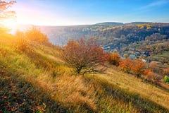 在小山和未开发的地区的美好的五颜六色的秋天风景的看法与树的在乡下 免版税库存图片