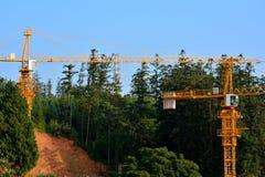 在小山和森林旁边的建筑 免版税图库摄影