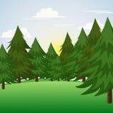 在小山场面的杉树 也corel凹道例证向量 图库摄影