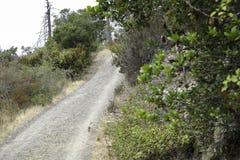 在小山的一条道路 图库摄影