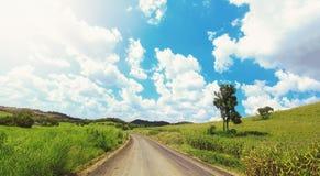 在小山的乡下路 免版税库存照片