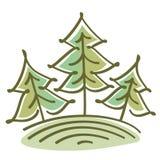 在小山的云杉的树 库存图片